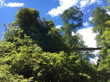 Montaña Mágica Lodge in Huilo Huilo Biological Reserve