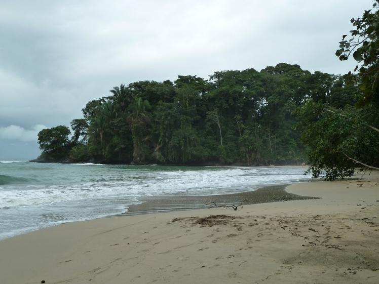 A beach near Punta Uva, Costa Rica